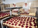 34866 Цех по производству хлебопродуктов,  Новые Петровцы